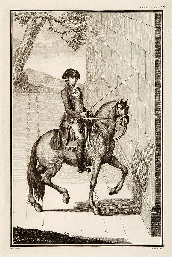 MARTINI,  No title: training a horse., antique map, old maps