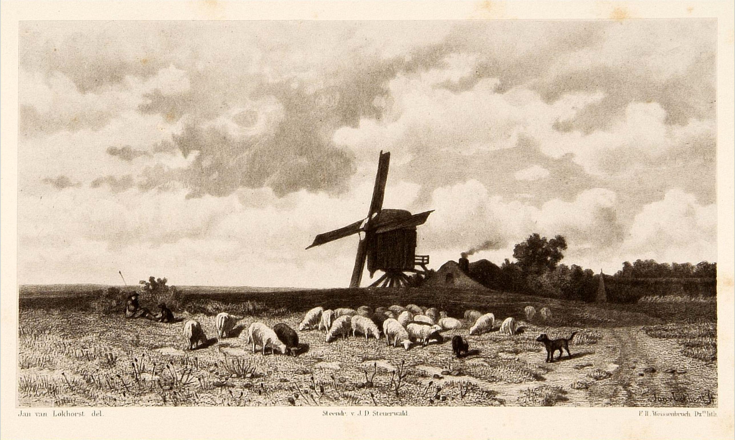 WEISSENBRUCH, F.H. -  Dutch windmill with sheeps.