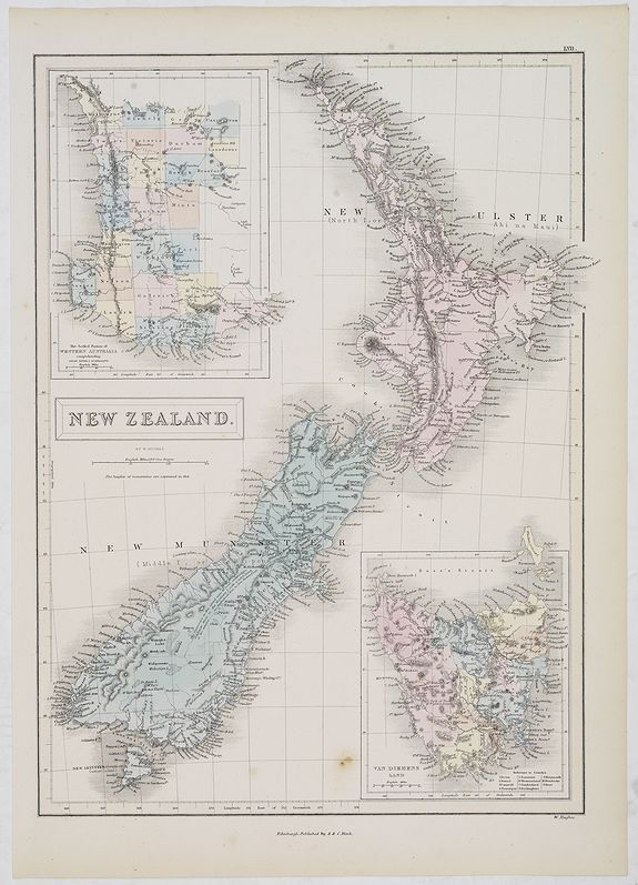 BLACK, A.& C. -  New Zealand.
