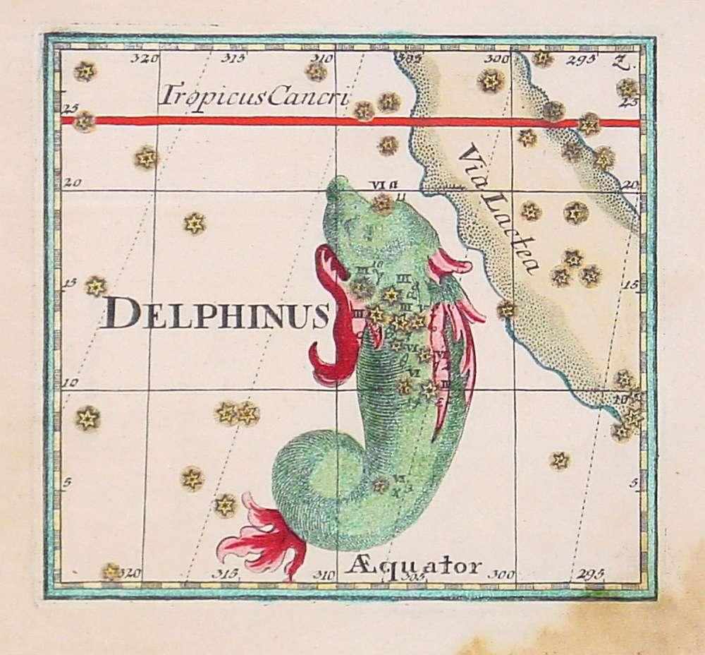 BERNDT,J.C. -  Delphinus.
