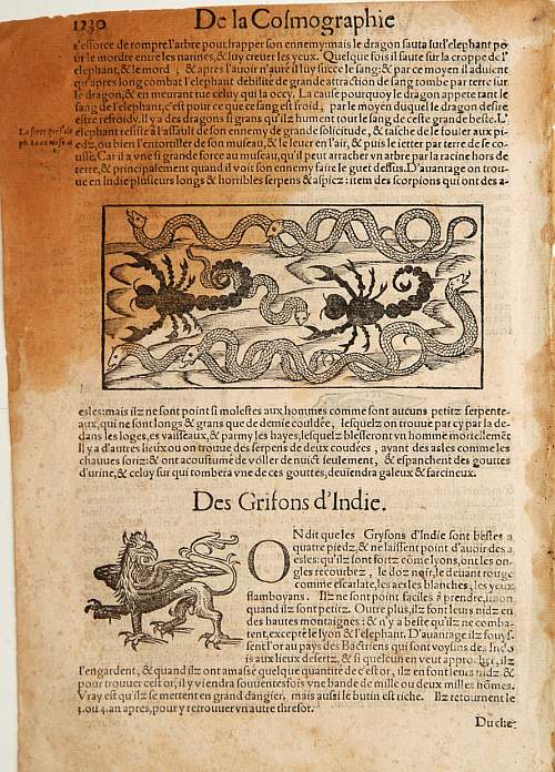 MÜNSTER, S. -  [Dragons and Gryfons].