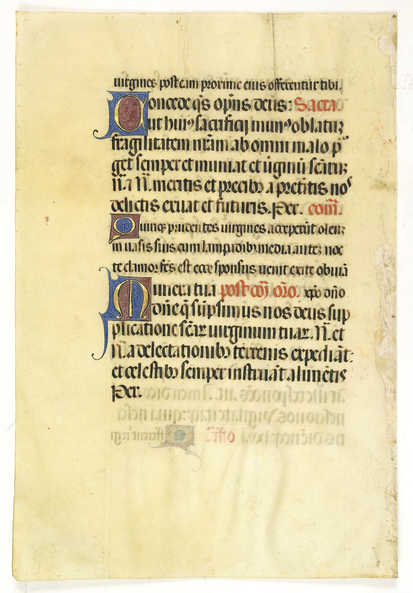 MISSAL. -  Leaf on vellum from a Missal.