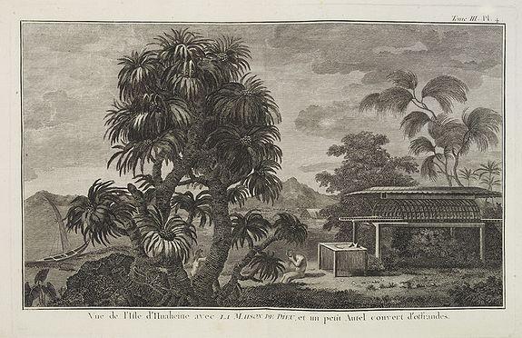 COOK, Captain James. -  Vue de l'Isle d'Huaheine avec La Maison de Dieu, et un petit Autel couvert d'offrandes.  [Tome III Pl. 4.]