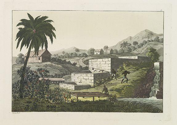 FERRARIO, G. -  [Slave labor on an indigo plantation ].