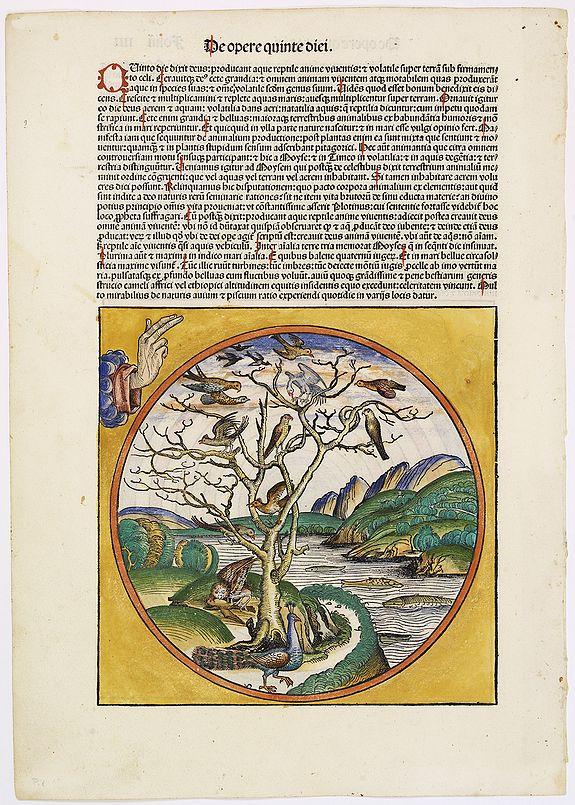 SCHEDEL, H. -  De opere quarte diei. Foliu IIII  De opere quarte diei. [The creation of the world - Fourth and fifth day]