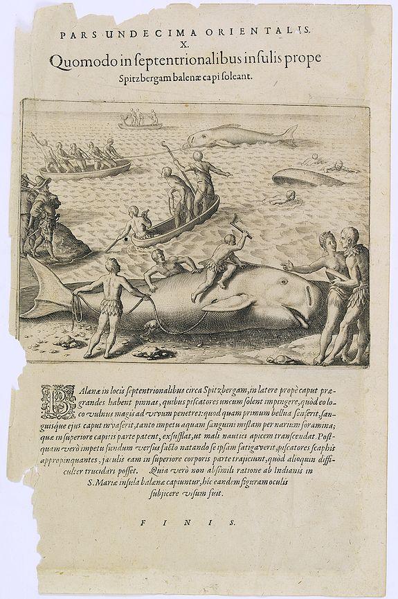 DE BRY, Th. -  Pars Undecima Orientalis X. Quomodo in Septentrionalibus insulis prope. (How the inhabitants catch whales off the east coast of Madagascar.)