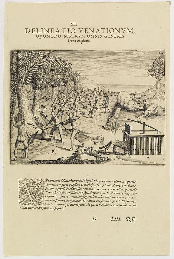 DE BRY, Th. -   XII. Delineatio Venationum, quomodo Nimir um Omnis Generis feras capiant.