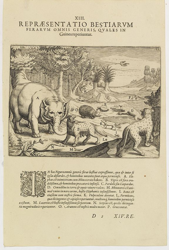 DE BRY, Th. -   XIII. Repraesentatio Bestiarum ferarum Omnis Generis, quales in Guinea reperiuntur.