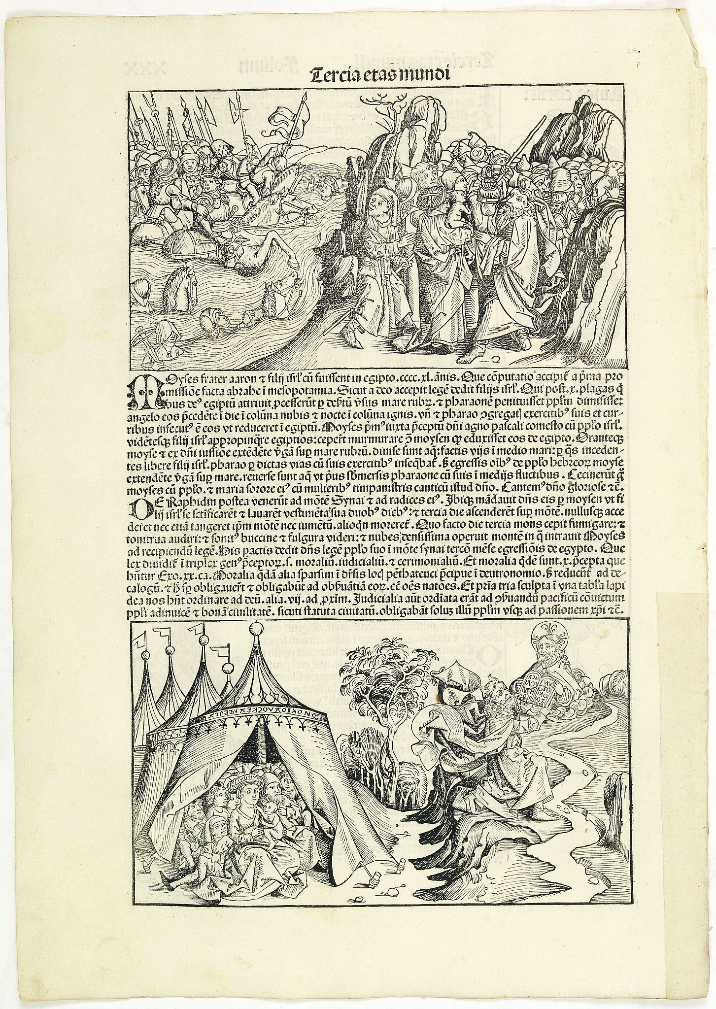 SCHEDEL, H. -  Tercia Etas Mundi. Folium.XXX