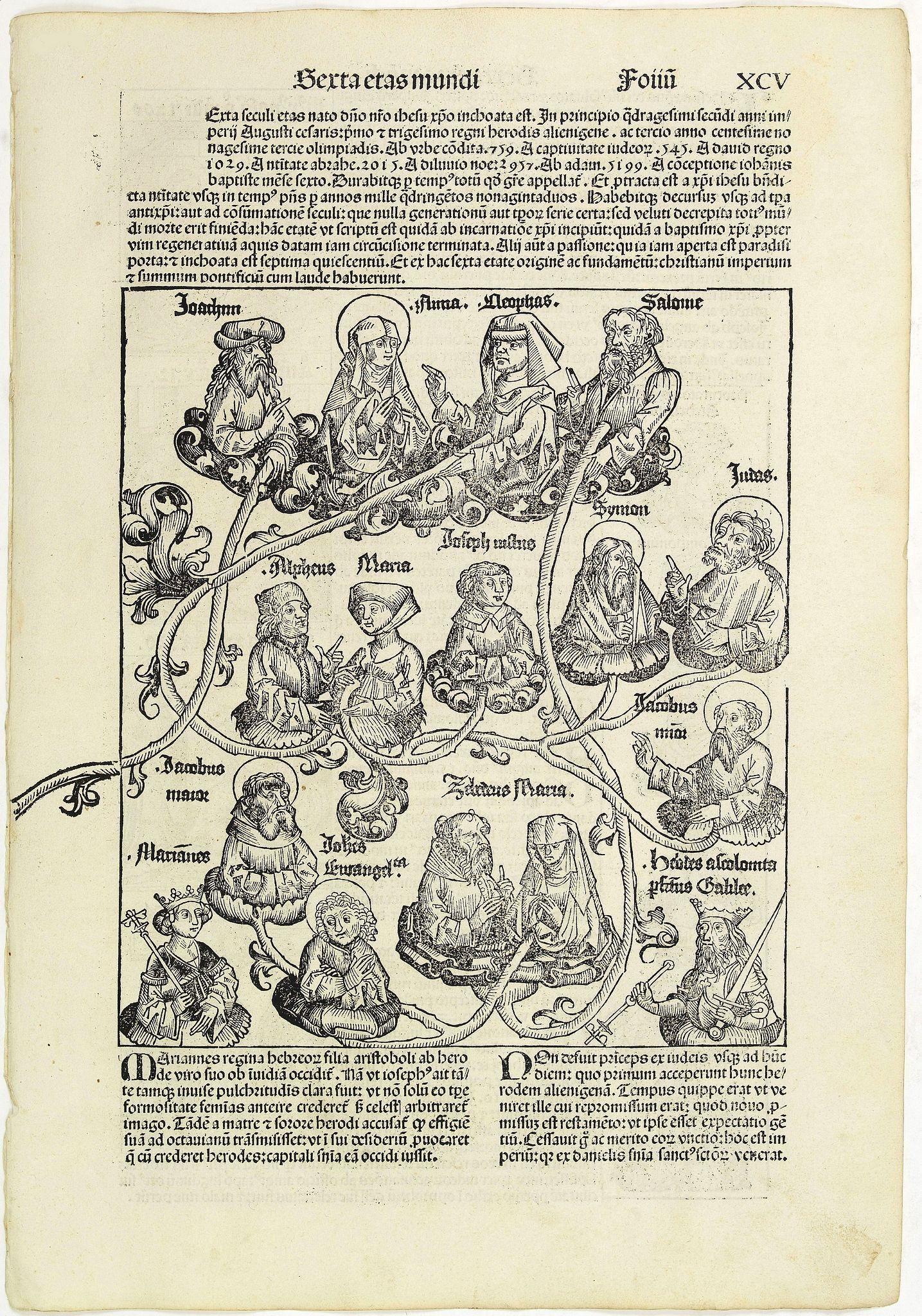 SCHEDEL, H. -  Serta Etas Mundi. Folium. XCV.