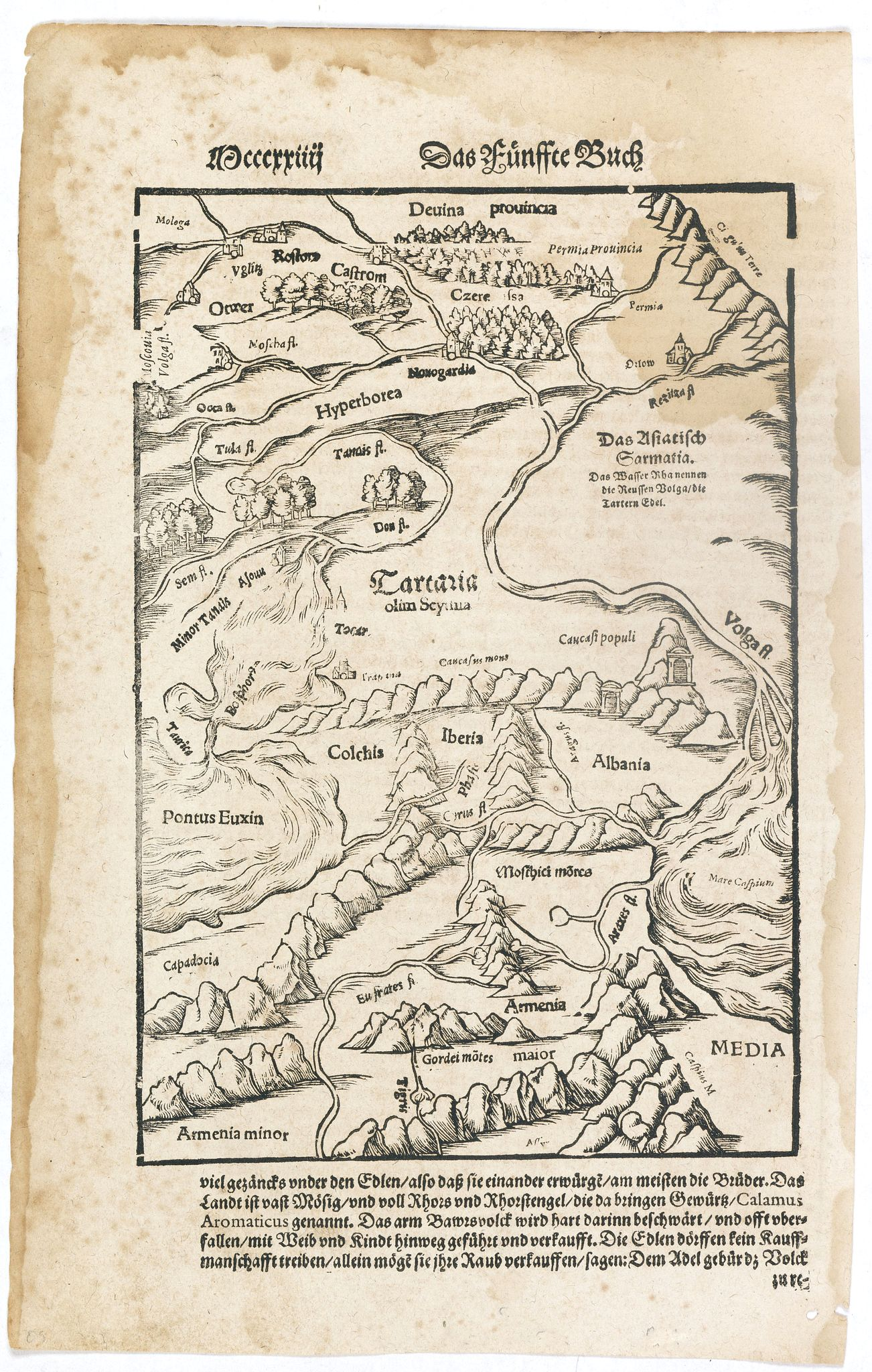 MUNSTER,S. -  [Tartaria].