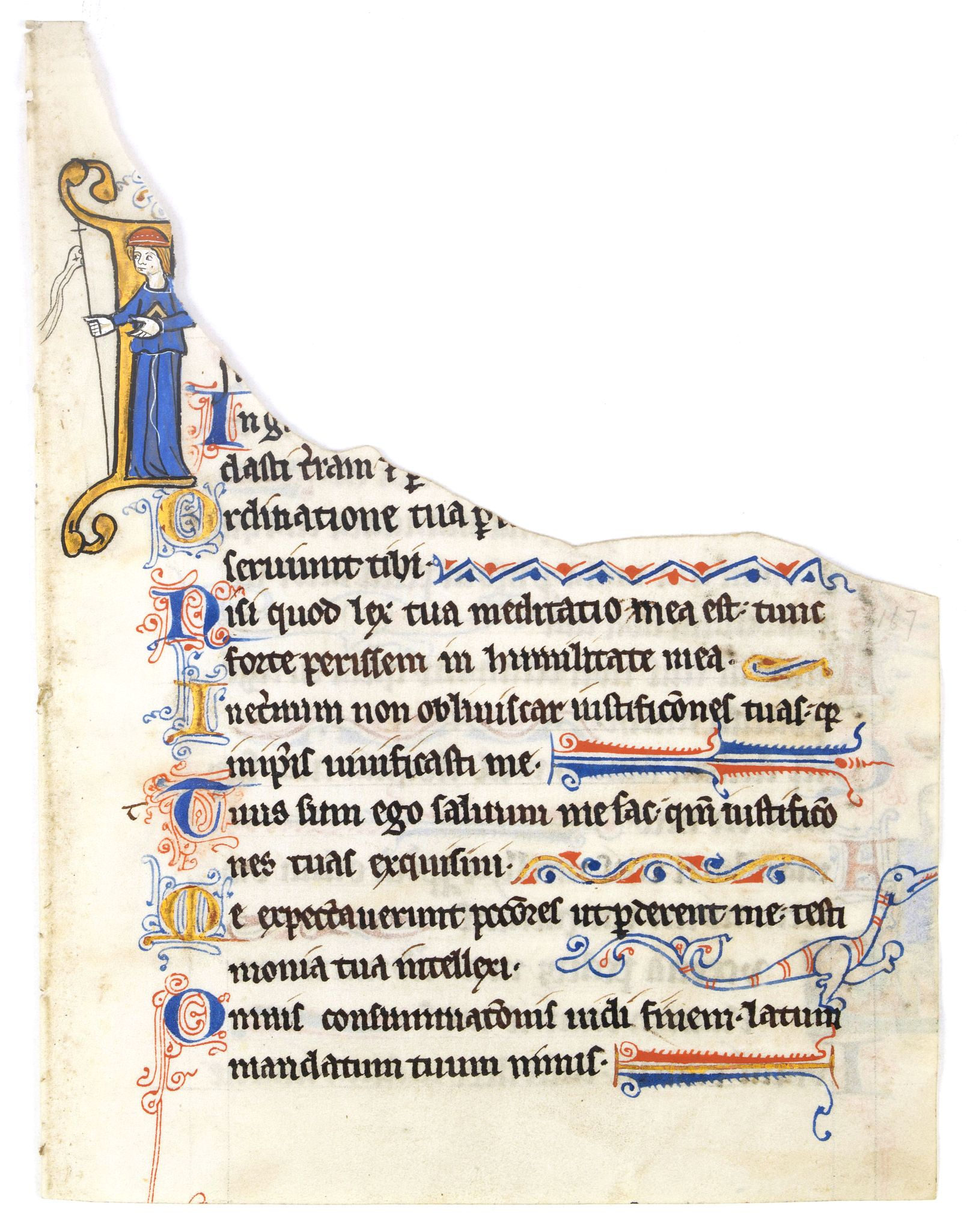 ANONYMOUS -  Illuminated leaf from a lithurgical Psalter.