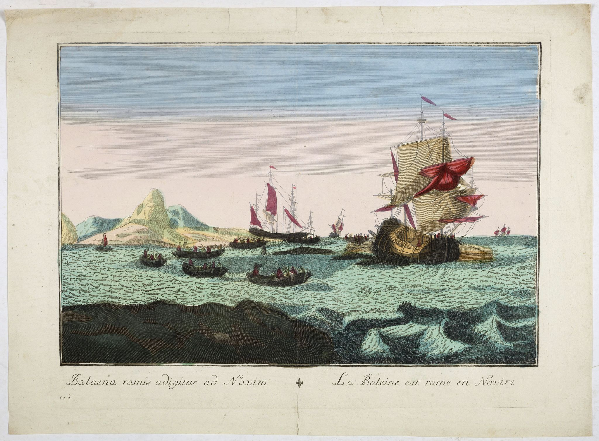 ANONYMOUS -  Balaena ramis adigitur ad Navim / La baleine est rame en Navire.