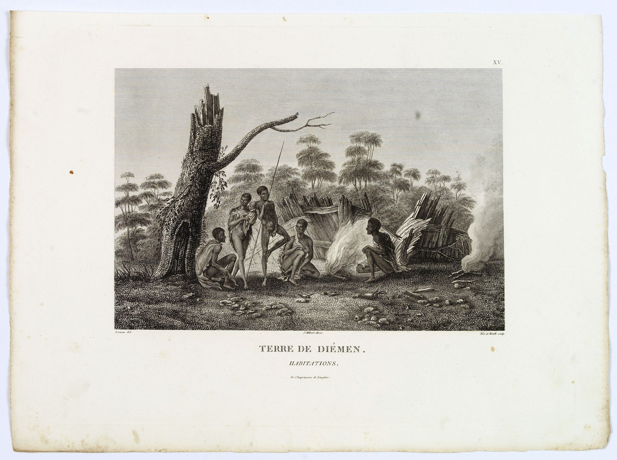 LESUEUR, C-A. / PERON, F. -  Terre de Diemen. Habitations. [plate XV]