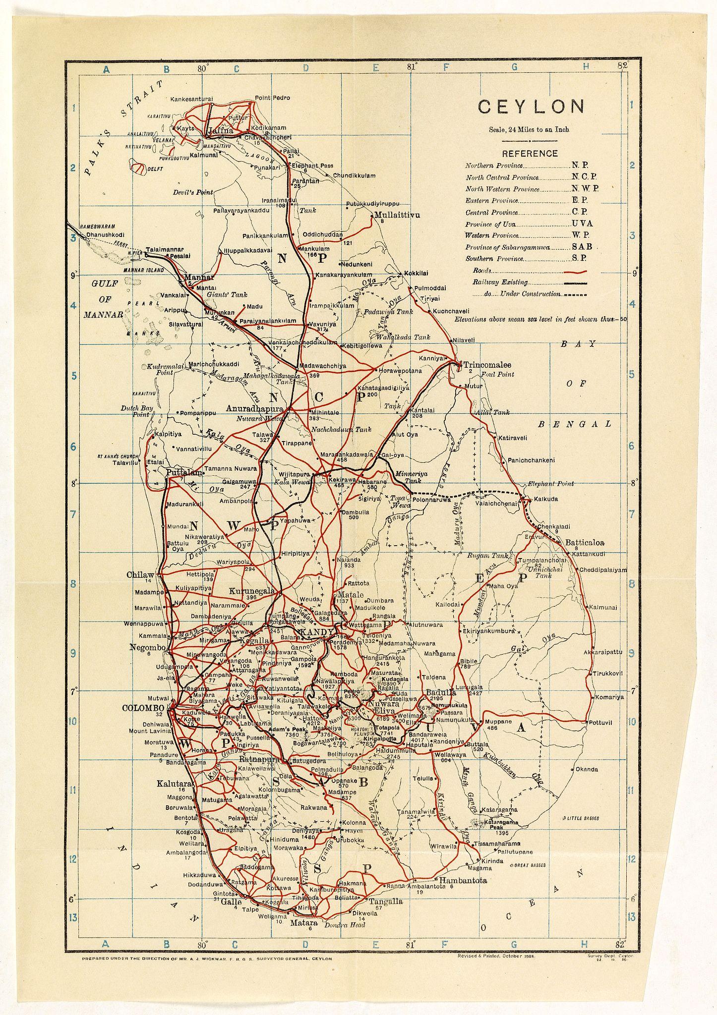 THE SURVEY OFFICE. -  Ceylon.