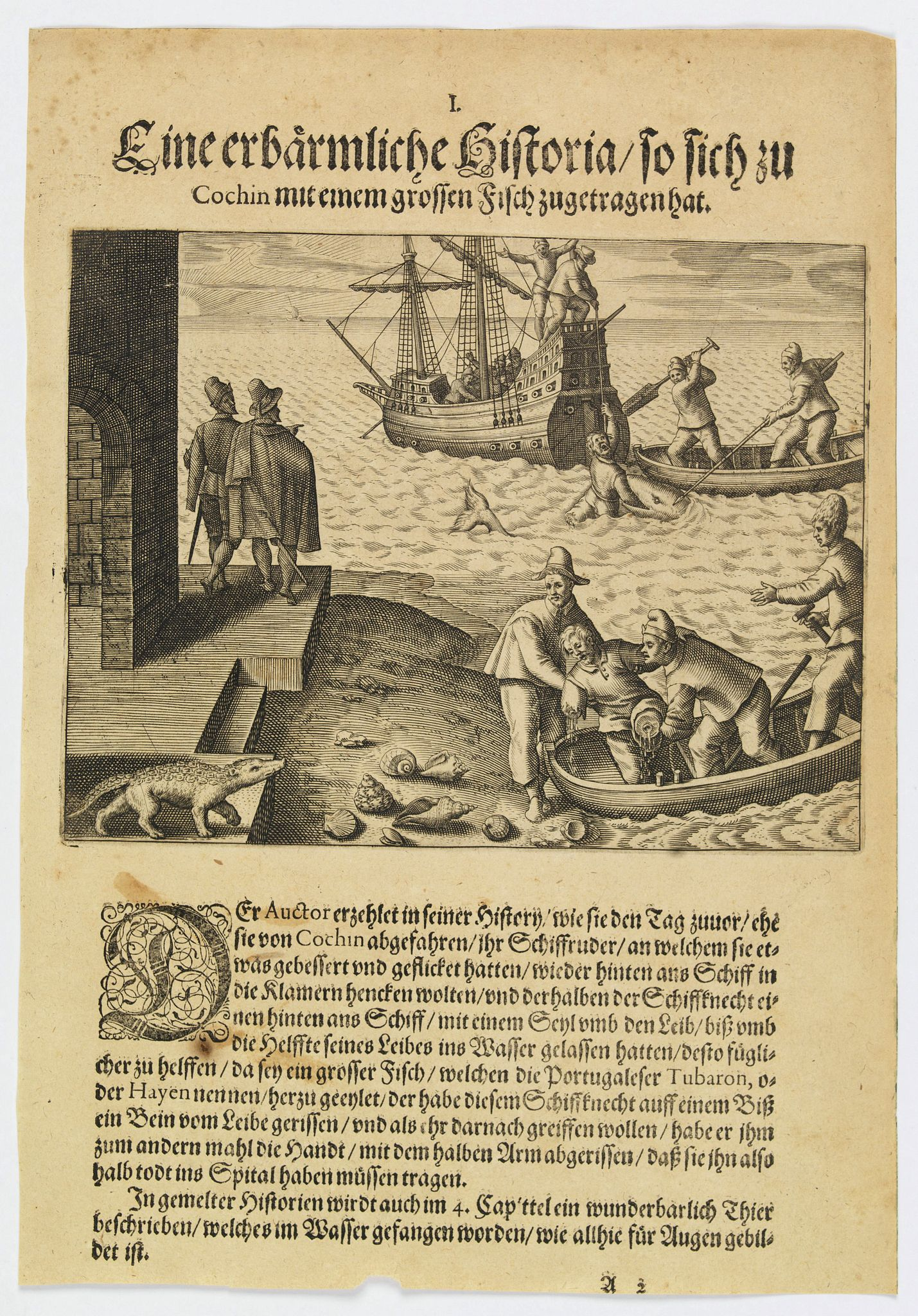 DE BRY, Th. -  A horrifying encounter with a large fish at Cochin.