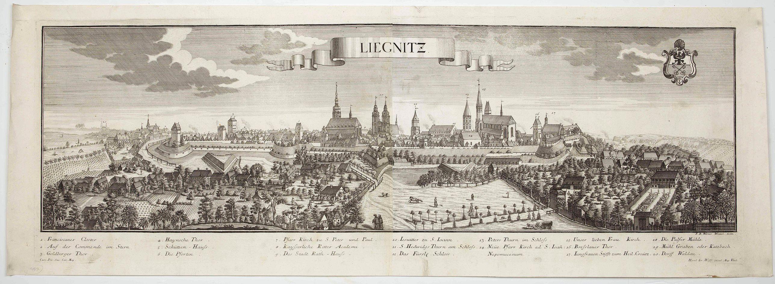 WOLFF, J. heirs / WERNER, F. B. -  Lirgnitz. (Legnica)
