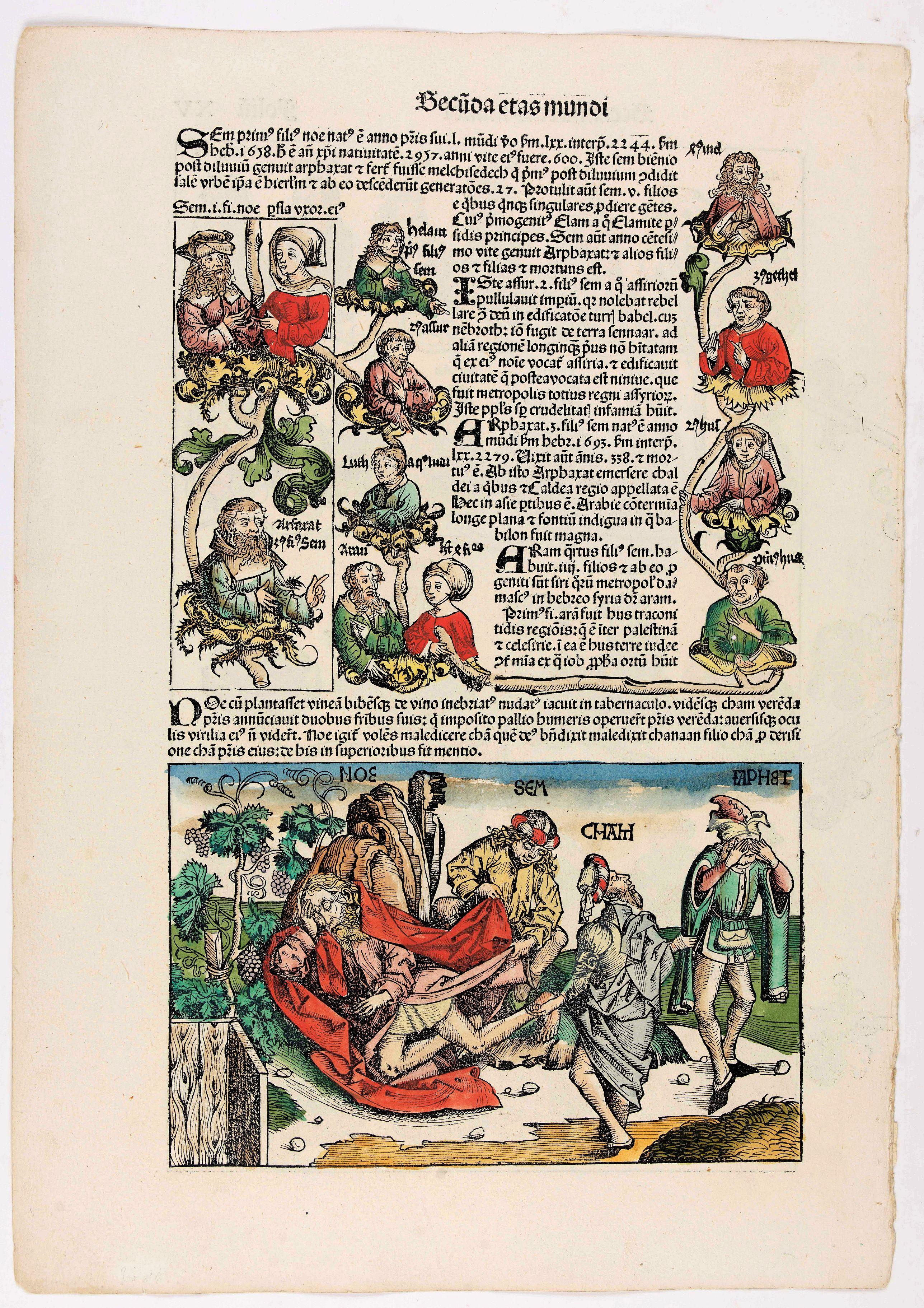 SCHEDEL, H. -  Quita Etas Mundi. Folium.XV