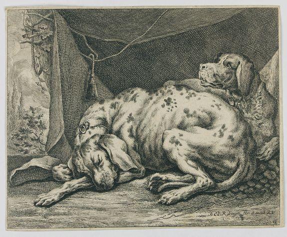 RIDINGER, J. E. -  [Two dogs]