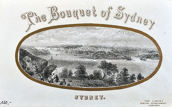 ADLER, C. - The Bouquet of Sydney.